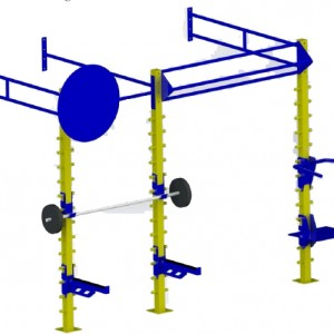 Small Wall Mounted Gym Training Rig